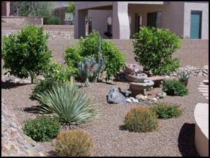 landscape services maintenance tucson landscaping reliable
