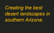 Creating the best desert landscapes in southern Arizona